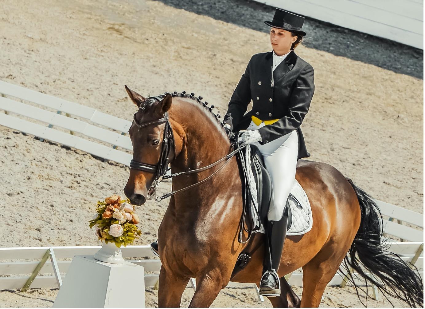 Knee Blocks In Dressage Saddles